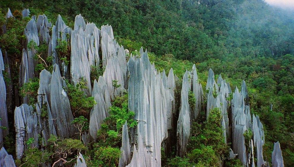 Parque Nacional Gunung Mulu -- Malásia