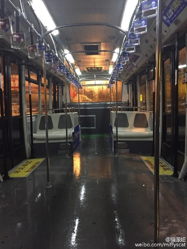 "Even the shuttle bus turned into a ~solo party~ bus. ""Regular buses I've rode alone, but for an (airport) shuttle bus, [this is the] first time,"" she wrote in her original posts."