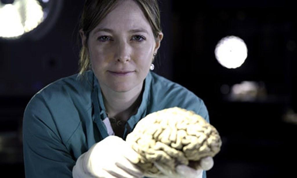 13 programas sobre ciência na Netflix que vão abrir a sua cabeça