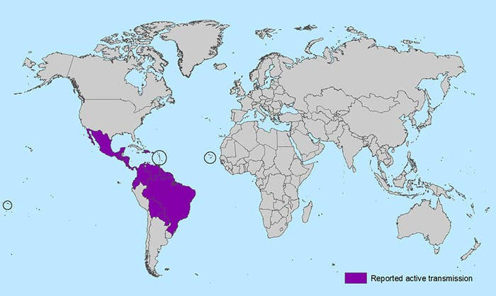 """Zika has been around since 1947, when it was found in Uganda. Up until 2015, outbreaks mostly occurred in Africa, Southeast Asia, and the Pacific Islands. In May 2015, the Pan American Health Organization (PAHO) confirmed the first outbreak in Brazil, and outbreaks are now occurring in 22 other countries in Central and South America — and the CDC reports that 31 travel-acquired cases have been confirmed in the United States. It is estimated that 3 to 4 million people in the Americas could become infected with Zika in the next year. The Zika virus is transmitted to people primarily through infected mosquitos in tropical regions. """"It's a mild infection — 80% of people have no symptoms but the 20% who do get a fever, rash, and joint pain for one week,"""" Amler says. There is no vaccine, and the only treatment is rest and hydration. During the first week of infection, the Zika virus is detectable in the blood and it can passed from the infected person to a new mosquito —but after about one week, the virus is out of your system, Amler says."""
