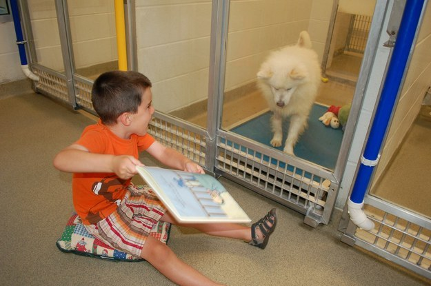 An animal shelter launched an educational program that invites kids to read to animals waiting to be adopted.