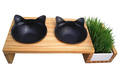 猫草付きCat Bowl