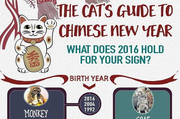 the cats guide to chinese new year meow hay fat choy - Chinese New Year 1992
