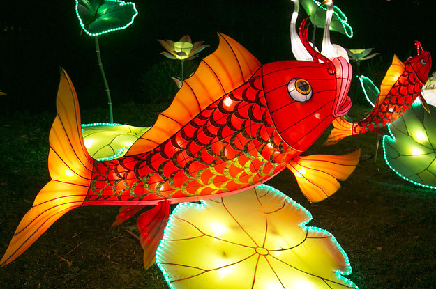 This Lantern Festival Is Like A Real Life Psychedelic Wonderland
