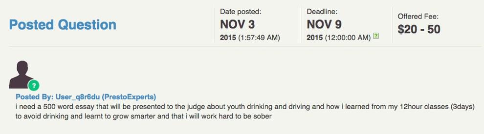 teenage drinking solutions essay