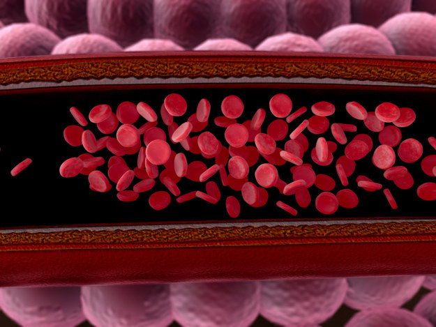 Nanobots are being developed that enter blood vessels to repair damage and distribute drugs.