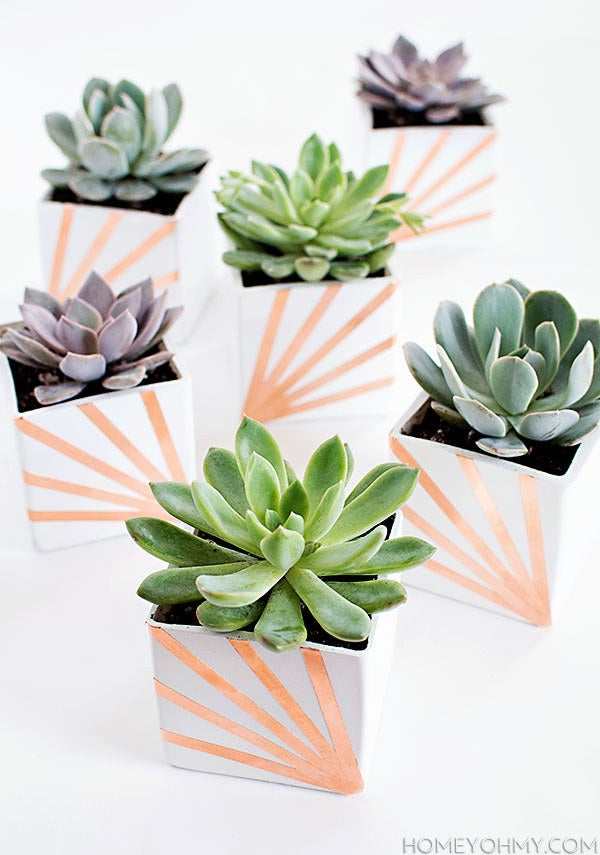 Copper is all the hype this spring, incorporate it in your house with these totally cute planters.