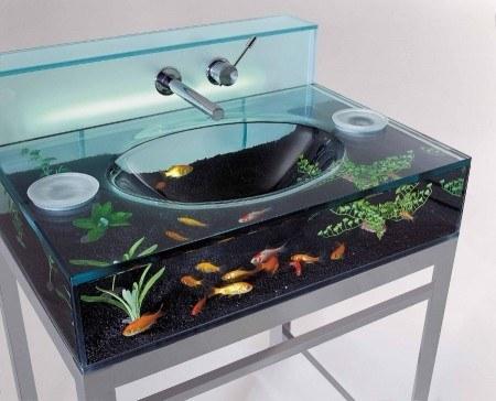 Haz que tus peces se sientan como en casa al ponerlos en tu lavabo.
