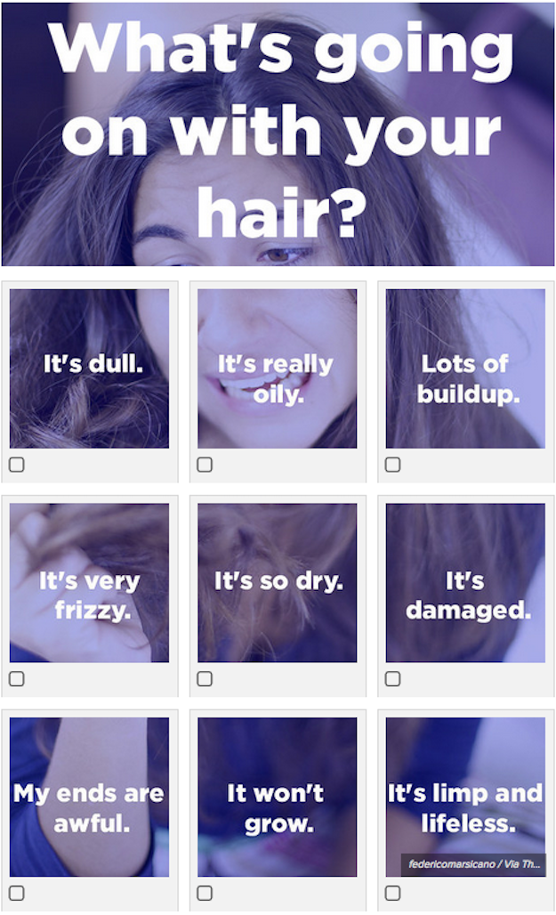 Take this quiz to figure out exactly what your hair needs. The results will tell you the best ingredients for your hair's issues at the moment.