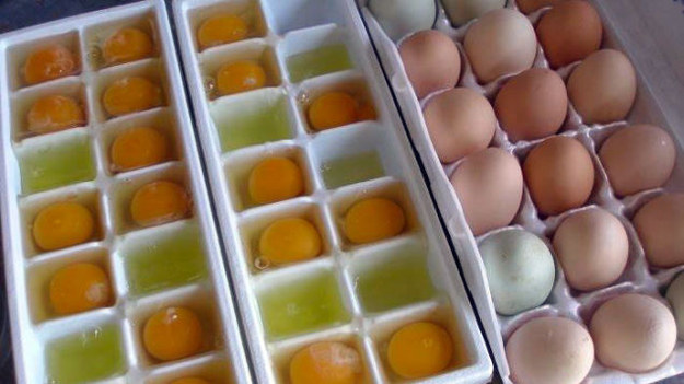 Make eggs last longer by freezing them: