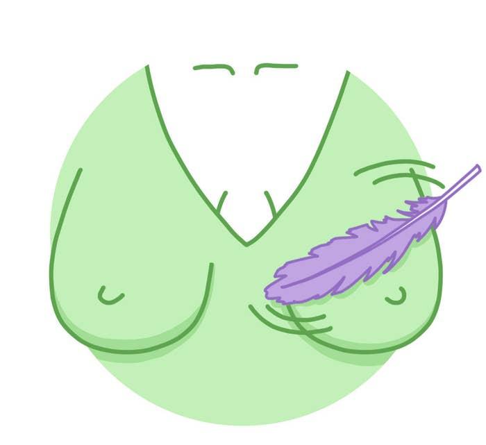 fd7746834 Massageie seus seios com as penas da asa de uma ave para promover a elevação .