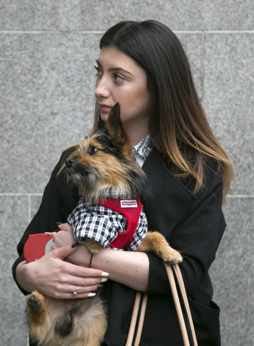This Dog Presented A Petition To The Government To Ban Animal Abusers From Owning Pets