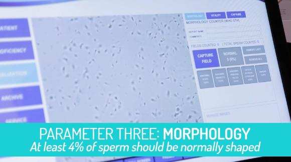online sperm Where can i buy