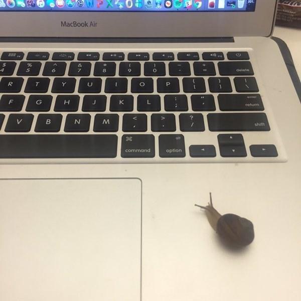 Always be blogging.