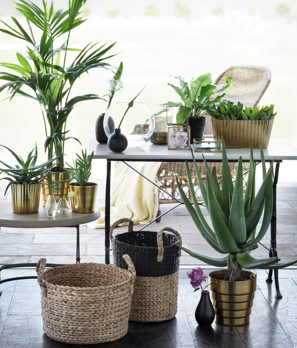Cute Home Decor Stores Online You Ll Wish You Knew About Sooner