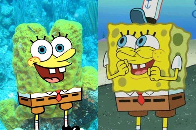 Spongebob Squarepants Characters In Real Life | www ...