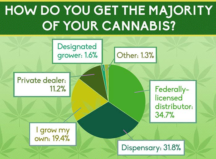 Canadian law requires medical marijuana users to obtain their medicine from a federally-licensed distributor. Some can also grow their own supply or purchase it from a designated grower, as part of older regulations that are currently still in force but may be changed in the coming months.In spite of the law, more than 35% of survey respondents instead choose to go to grey-market dispensaries/compassion clubs, or to a private dealer.