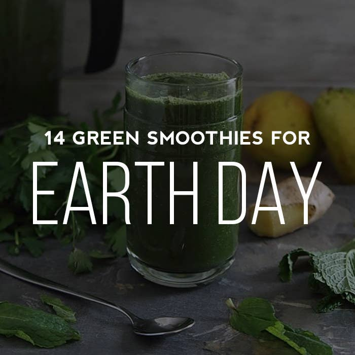 """These 14 Green Smoothie Recipes for Earth Day are fourteen tasty, healthy, and earthy choices that will give you a green """"tum."""""""