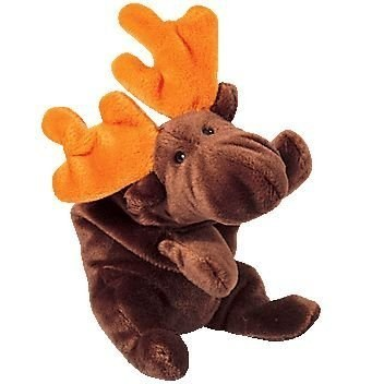 Chocolate the Moose: you do something at a cool company