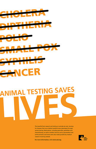 animal testing 6 essay The term animal testing is the process of subjecting animal to clinical trials before conducting human trials animal testing involves developing an experiment to animal testing is used in education and applied in biomedical research there are many animal testing being carried out even though various.