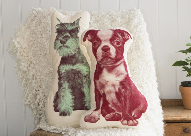 Set a pup-shaped pillow on your reading chair.