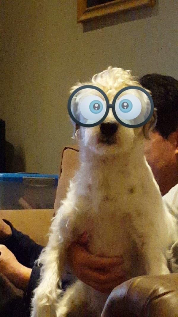 This nerd: