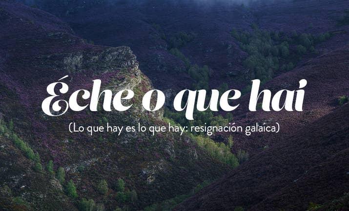 http://ogalego.eu/exercicios_de_lingua/exercicios/frases.htm