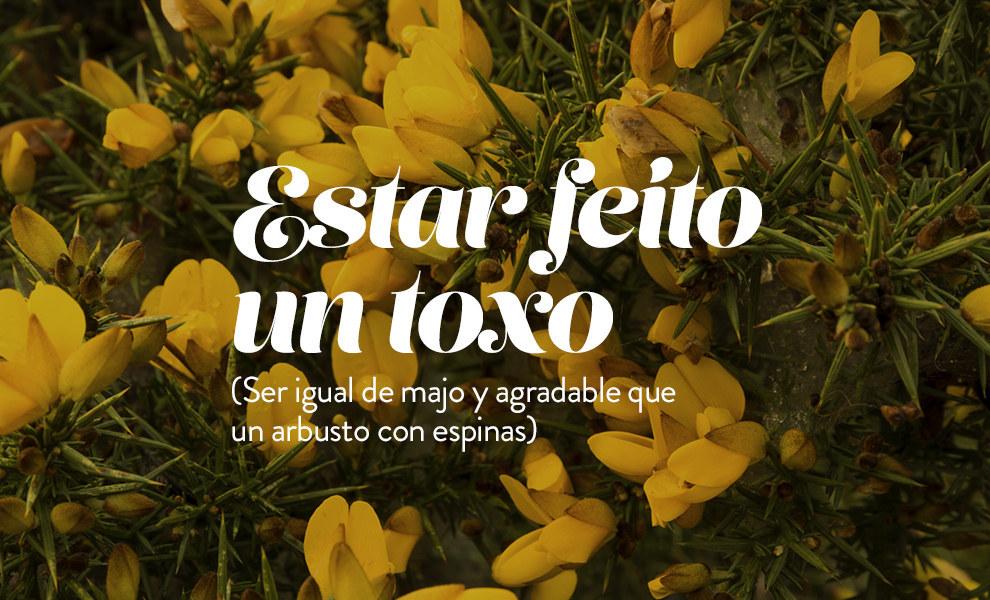 Frases típicas en gallego