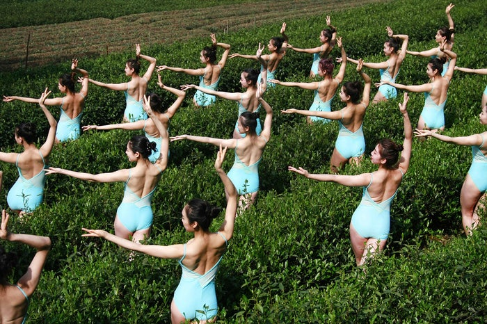 Girls perform in a tea garden during the shooting of a television show in Hangzhou, Zhejiang Province of China. Contestants of a TV reality show did yoga and picked tea at a tea garden in Hangzhou.