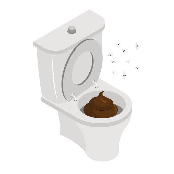 Bathroom Stall Quiz can you survive a public restroom?
