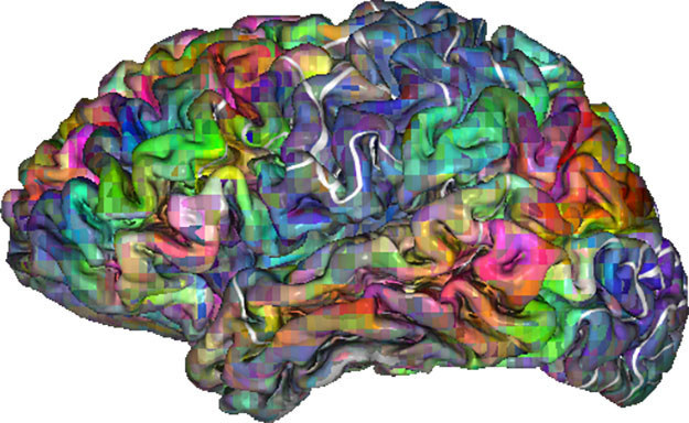This Is How Language Might Be Mapped In Your Brain