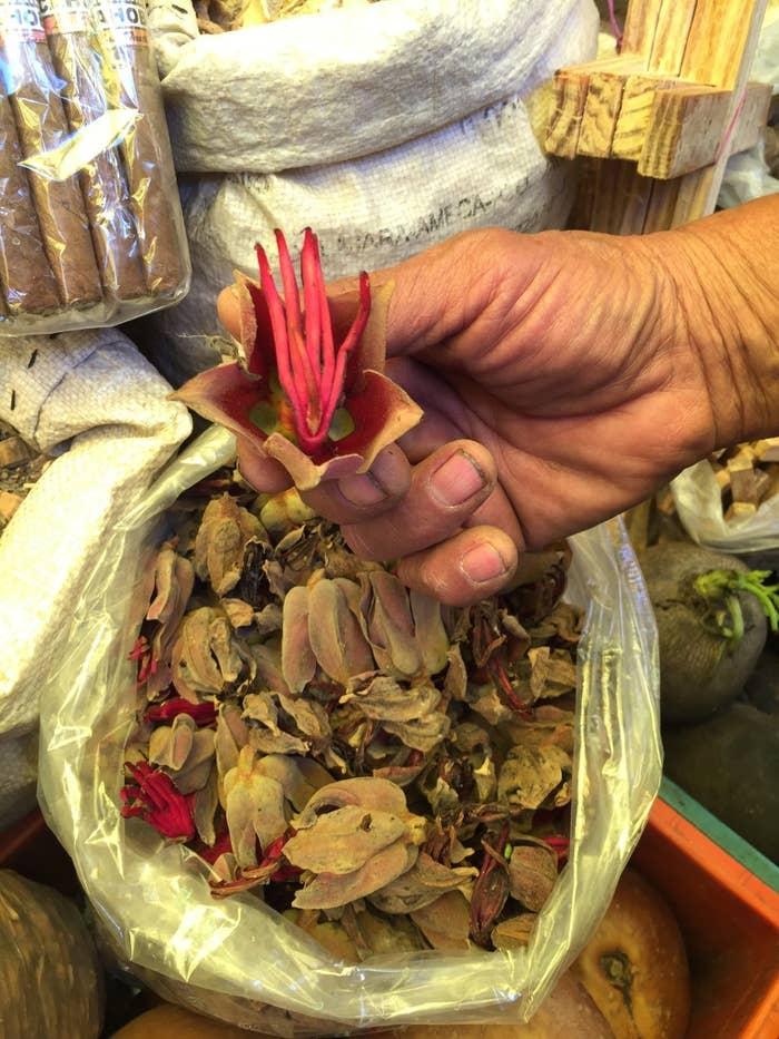 agujero en la cabeza cura de cuerno de flores para la diabetes