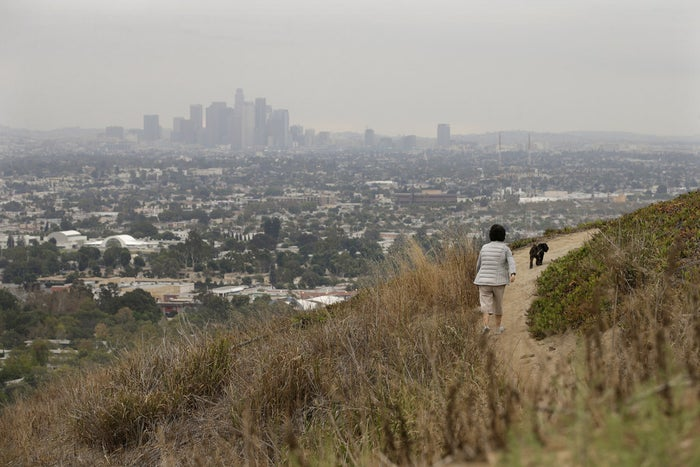A woman walks her dog in hills overlooking Los Angeles.