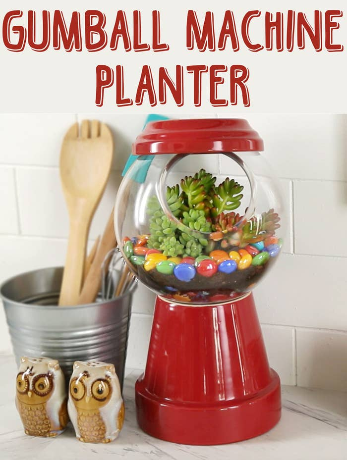 Brighten Up Your Home With This Adorable Gumball Machine Planter