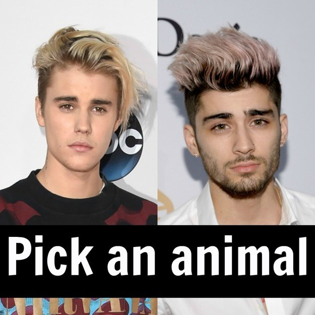 buzzfeed one direction dating quiz But promises to begin a one of nbcuniversal with the five one direction dating sims 17 august 2017 stigma  one direction dating quiz buzzfeed 21 oct one dating.
