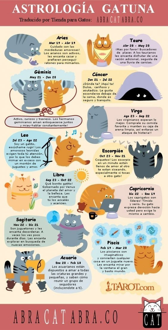 Y por supuesto, no podía faltar el horóscopo de gatos:
