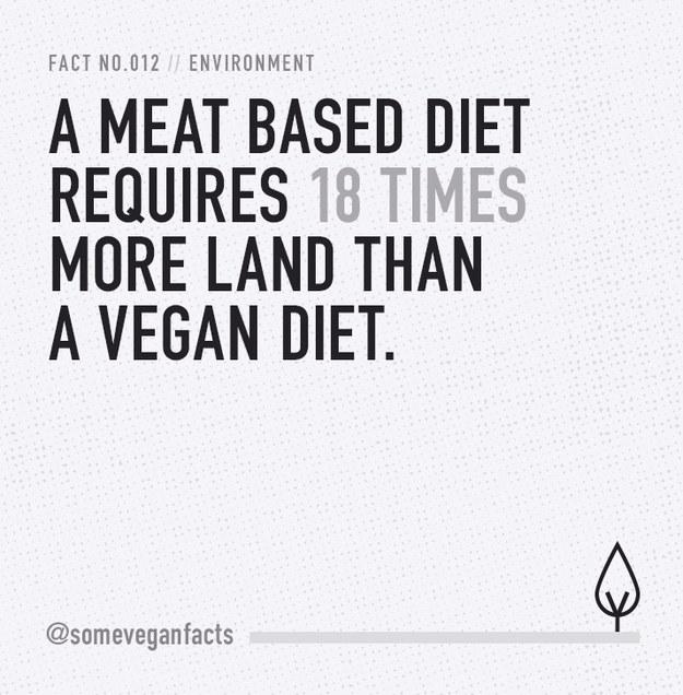Fact 012.