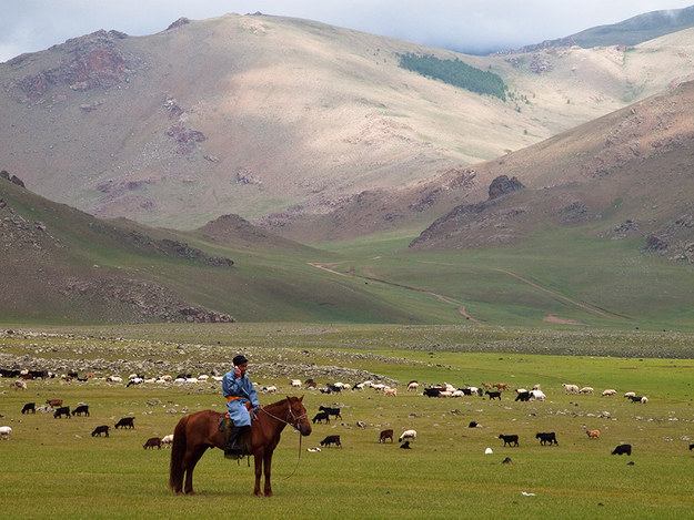 4. Mongolia: The Well-Rounded All Star