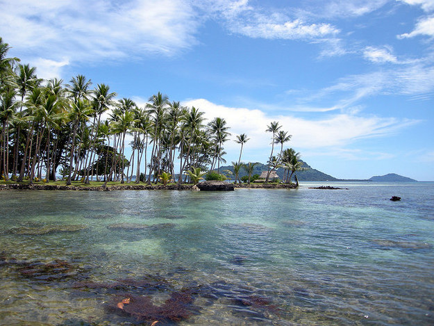 9. Federated States of Micronesia: The Energy Expert