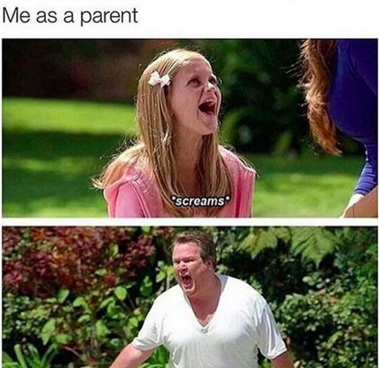 What's The Best Meme About Being A Parent?