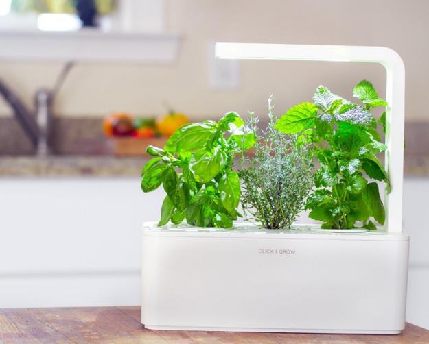 Un sistema de riego para interiores que puedes usar aunque no se te de la jardinería.