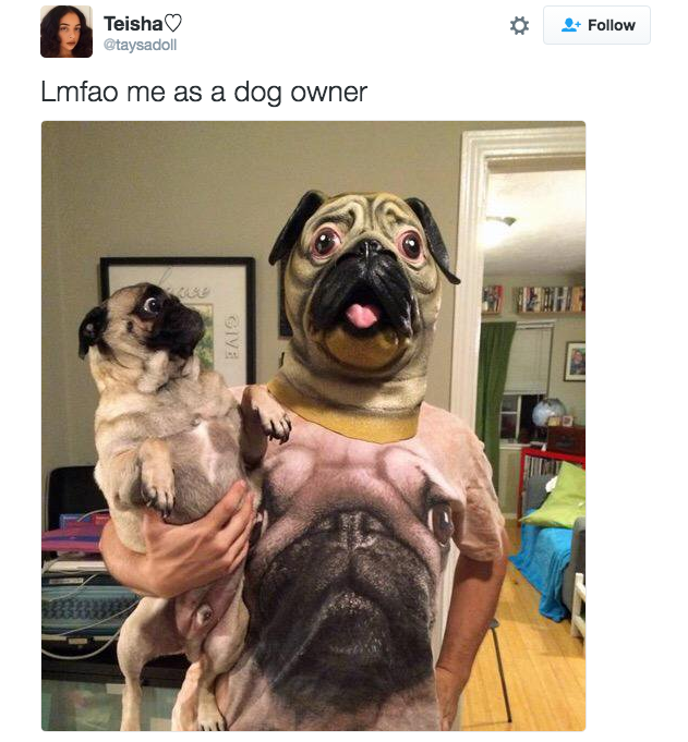 17 Pictures That Are Literally You As A Dog Parent