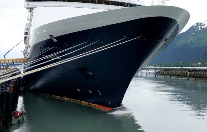 A whale carcass is seen on the bow of a cruise ship at a port in Seward, Alaska.