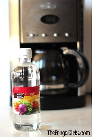 New Coffee Maker Vinegar : 7 Easy Cleaning Tips You ll Actually Want To Try