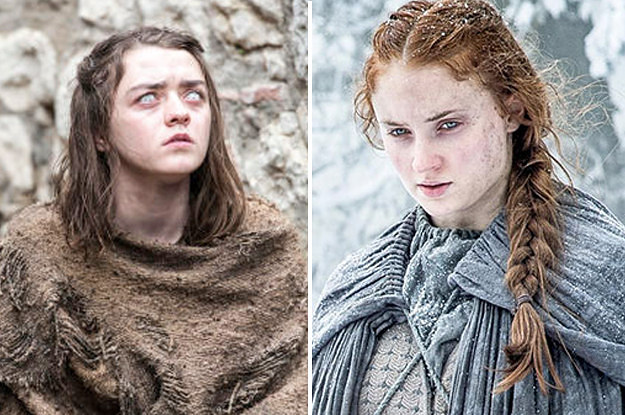 this game of thrones fan theory might reveal the starks future
