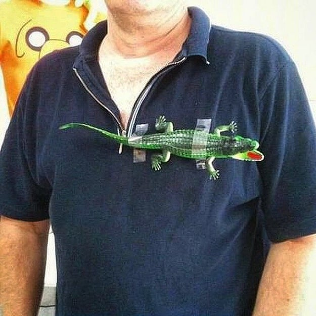 This Lacoste polo shirt: