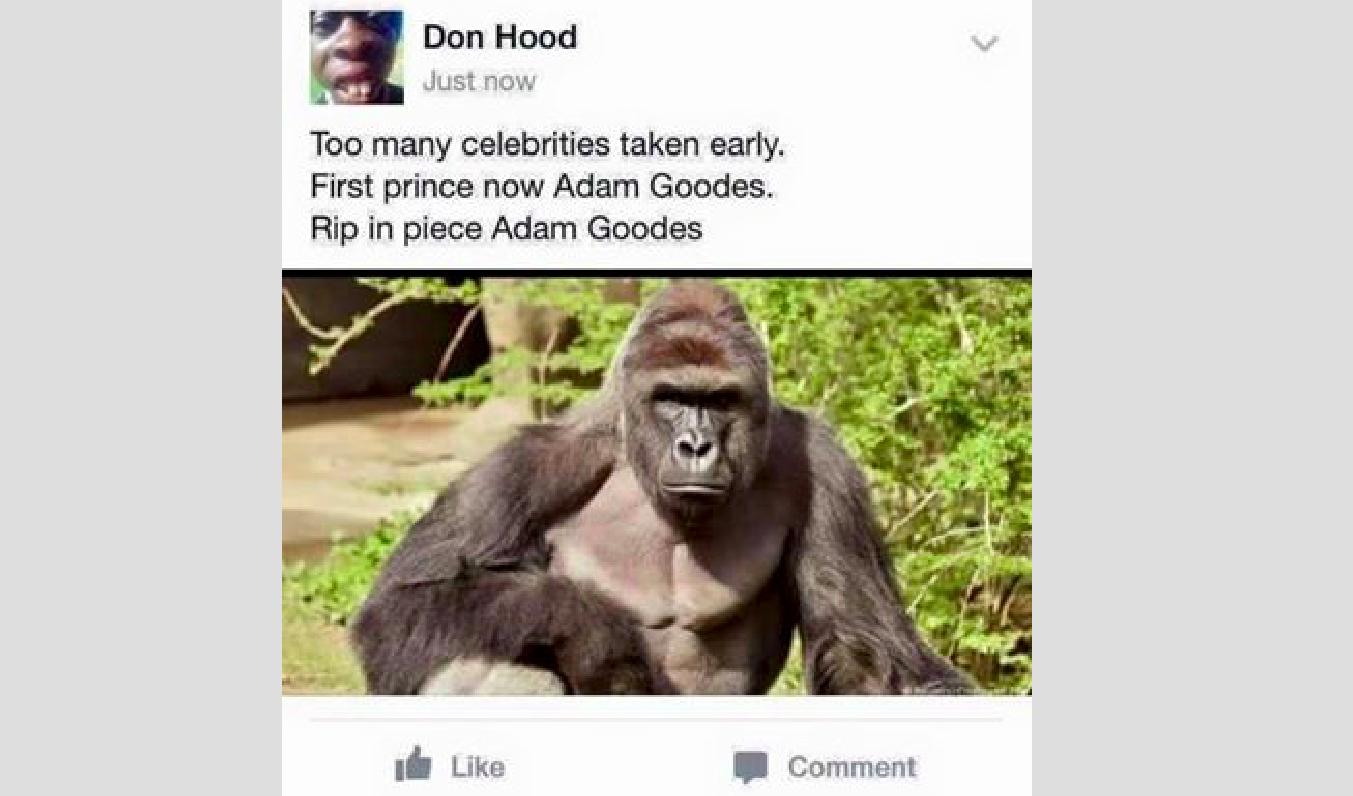 sub buzz 5858 1464836037 1?downsize=715 *&output format=auto&output quality=auto facebook memes compare aboriginal athlete to gorilla that was