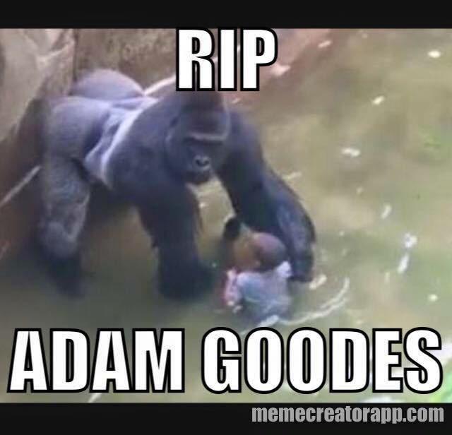 sub buzz 5229 1464834562 9?downsize=715 *&output format=auto&output quality=auto facebook memes compare aboriginal athlete to gorilla that was