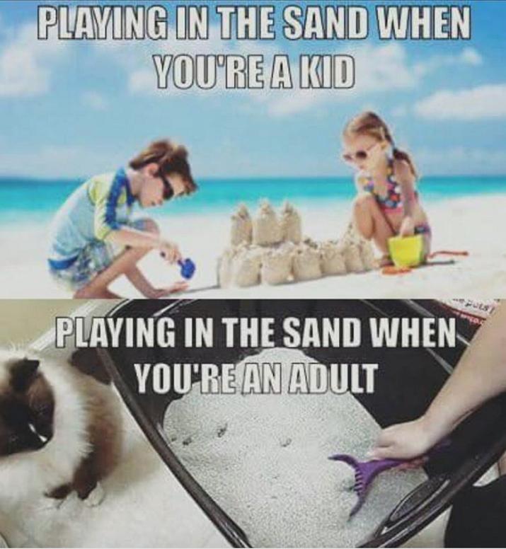 """""""Brincando na areia quando você é criança. Brincando na areia quando você é adulto."""""""