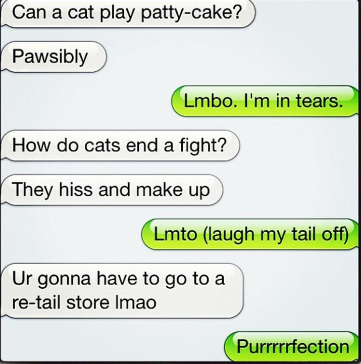 Sim, vocês trocam mensagens quentes imitando o modo como os gatos falam. Exceto pelo fato de que gatos não falam.